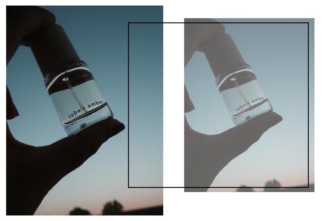 Parfums ohne Tierversuche Cobalt Amber Abel